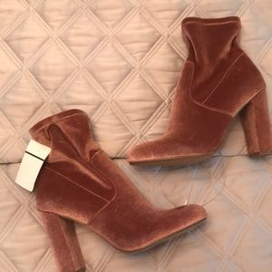 Steve Madden brand new blush velvet booties